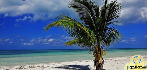 جزيرة كوبا